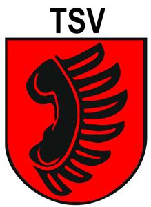 TSV Zizishausen Handball