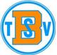 Logo_TSV-Birkenau